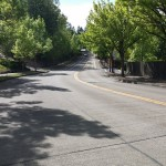 Road into our community